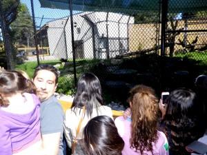 Zoo-06