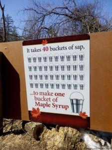 MapleSyrupFestival-33